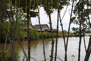 Mauritius Lodges in nature among the mangroves